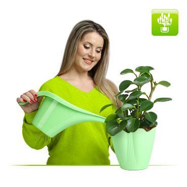 Товары для цветоводства и растениеводства из пластмасс